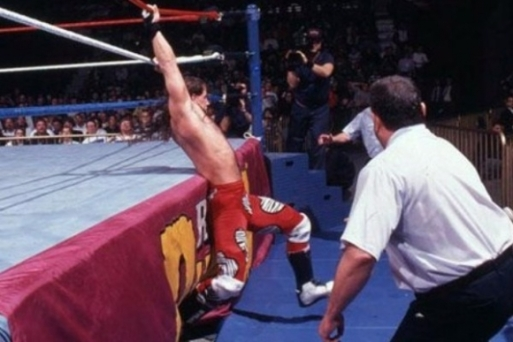 shawn-michaels-royal-rumble-1995-e1452951355659